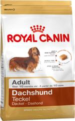 Royal-Canin-DACSHUND-319.1